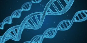 DNA Fertility South Therapy